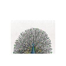 Marini Ferlazzo Birds Tea Towel 50x70cm Peacock