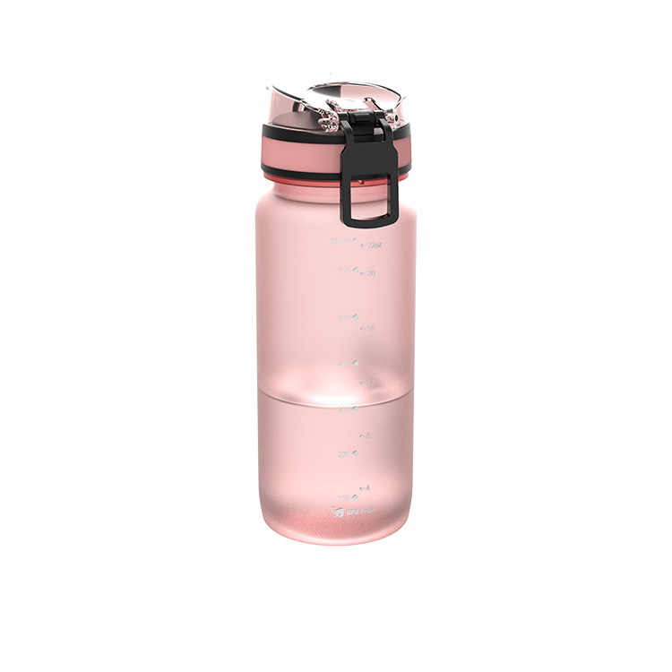 Ion8 Tour Water Bottle 750ml Quartz