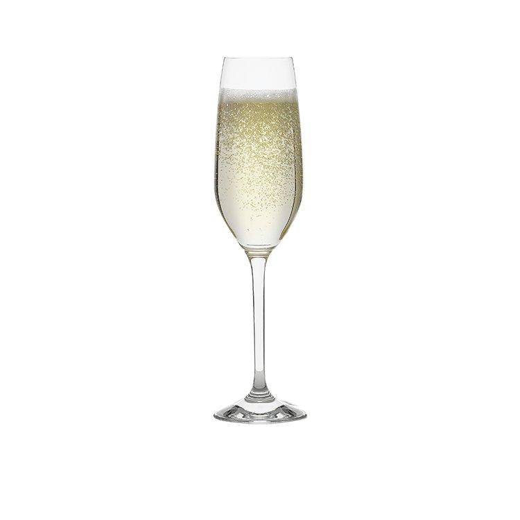 Kitchen Warehouse Champagne Flute 205ml