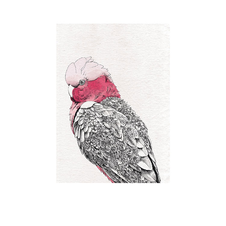 Maxwell & Williams Marini Ferlazzo Birds Tea Towel 50x70cm Galah