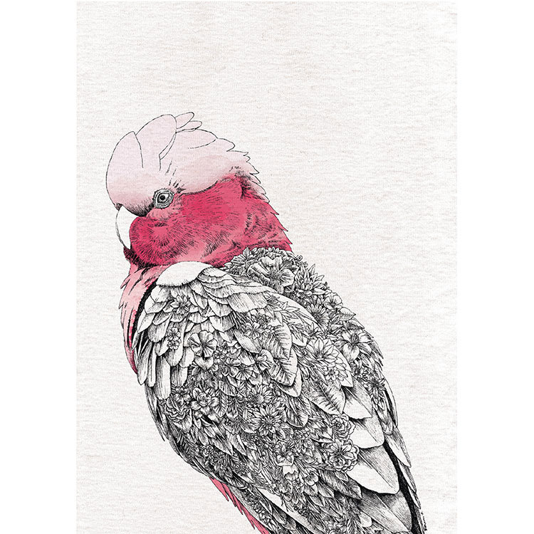 Maxwell & Williams Marini Ferlazzo Birds Tea Towel 50x70cm Galah