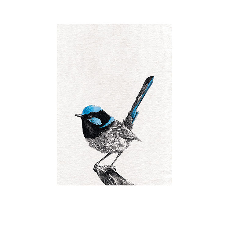Maxwell & Williams Marini Ferlazzo Birds Tea Towel 50x70cm Superb Fairy Wren