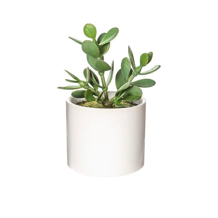 Rogue Artificial Jade Plant w/ Mila Pot