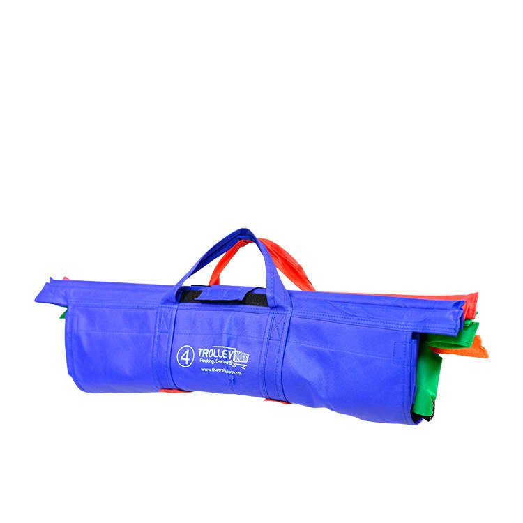 Trolley Bags Express Vibe Set of 4