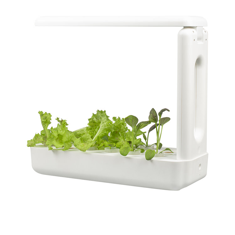VegeBox Home - Indoor Hydroponic Garden