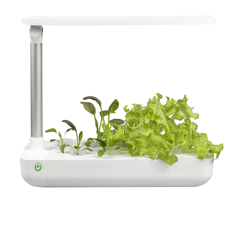 VegeBox Table - Indoor Hydroponic Garden